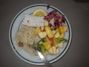 Some of the delicious Summit food: Halibut, seasoned rice and some fruit salad