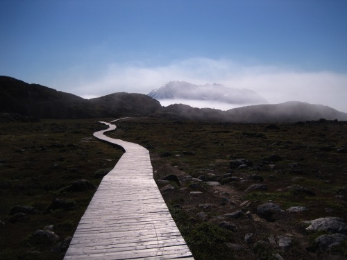 A boardwalk leads to the World Heritage site.