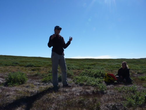 Julia Bradley-Cook teaches us about carbon in soils and the atmosphere near her field sites in Kangerlussuaq, Greenland