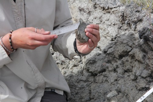 Step Three (A): Collect samples of the biological soil crust that develops within the eroded patches. Measure the thickness of the crust at each sampling location.