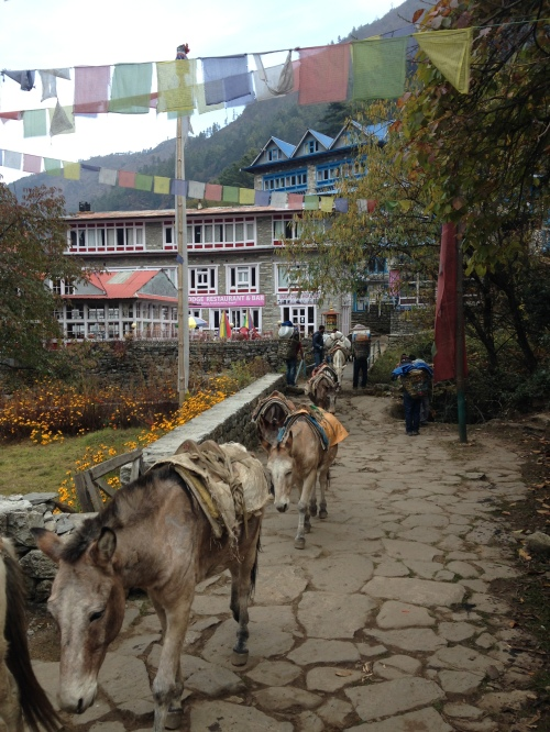 Phakding (where we stayed saturday night, 2610 m, 3 hr from Lukla)