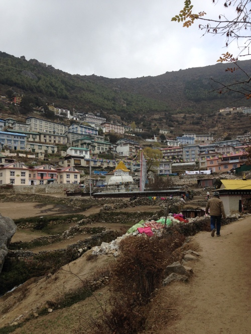 Namche Bazar (the biggest town on the trek, 3440 m, 5 hr from Phakding)