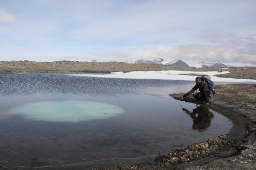 Jess records the water temperature of one of the small meltwater ponds. Ice sits at the bottom of the pond.